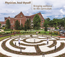 Physician, heal thyself: Bringing wellness to the curriculum