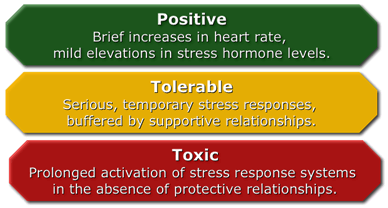 Toxic Stress Infograph
